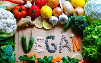 Great Vegan Protein Sources